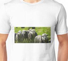Still More Herdwicks ~ Leac Na Ban, Argyll, Scotland Unisex T-Shirt