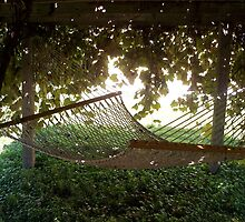 under the grape arbor by swimmer