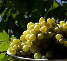 Green Grapes by edesigned