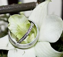Wedding rings resting by Prominence