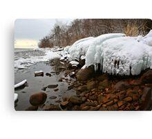Ontario winter 4 Canvas Print