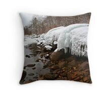 Ontario winter 4 Throw Pillow