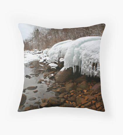 Ontario winter 4 Throw Pillow