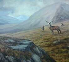 Stag In The Donegal Hills Ireland by Nigel Allison