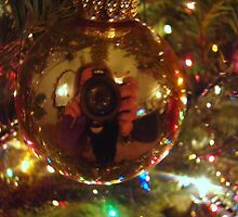 Hello!  I'm Behind This Bulb.   by Wanda Raines