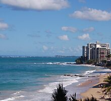 Puerto Rico beach 2 by loserboy