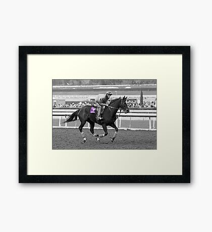 Breeders' Cup Classic World Champion Zenyatta Framed Print