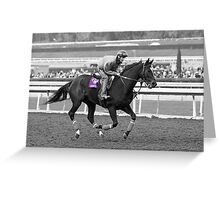 Breeders' Cup Classic World Champion Zenyatta Greeting Card