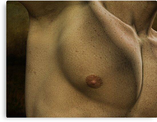 Photorealism Study Pt1 by TristanPhoenix