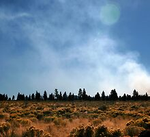 Where there is smoke...  by James Davidsmeyer