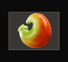 chilli by vampvamp