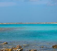 Blue Island Rush by MarianBendeth
