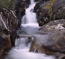 Jackson's Creek Cascades by Damien Hingston