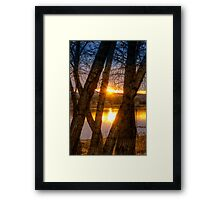 Trees in my Way...Wait Framed Print