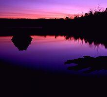 Lake Myrtle Sunset by Damien Hingston
