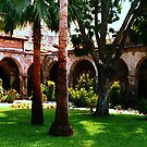 Mission San Juan Capistrano California 5 by Dana Roper