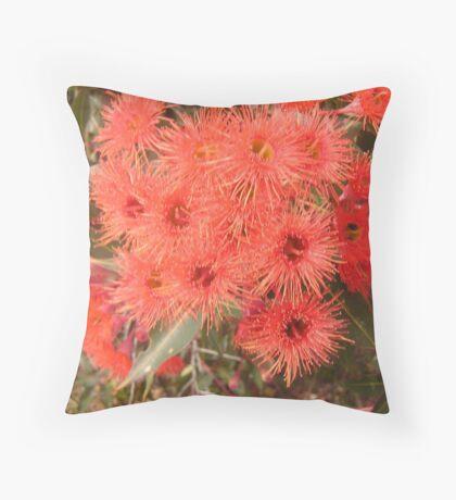 Corymbia Ficifolia Throw Pillow