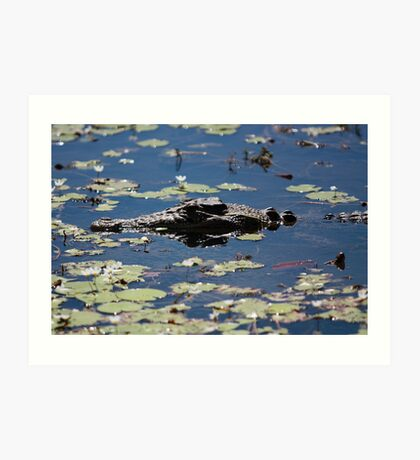 Floating Saltie Art Print