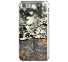 Moss Code iPhone Case/Skin
