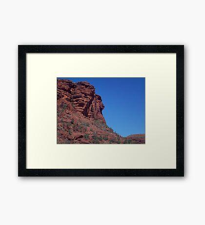 Palm Valley Framed Print