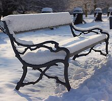 Winter Bench by Delfino