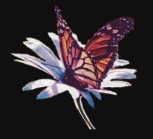 Butterfly on Daisy by Ilunia Felczer