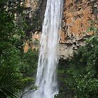 Purling Brook Falls, Springbrook National Park by SunnieGal