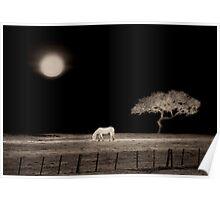 White Horse Moon Poster