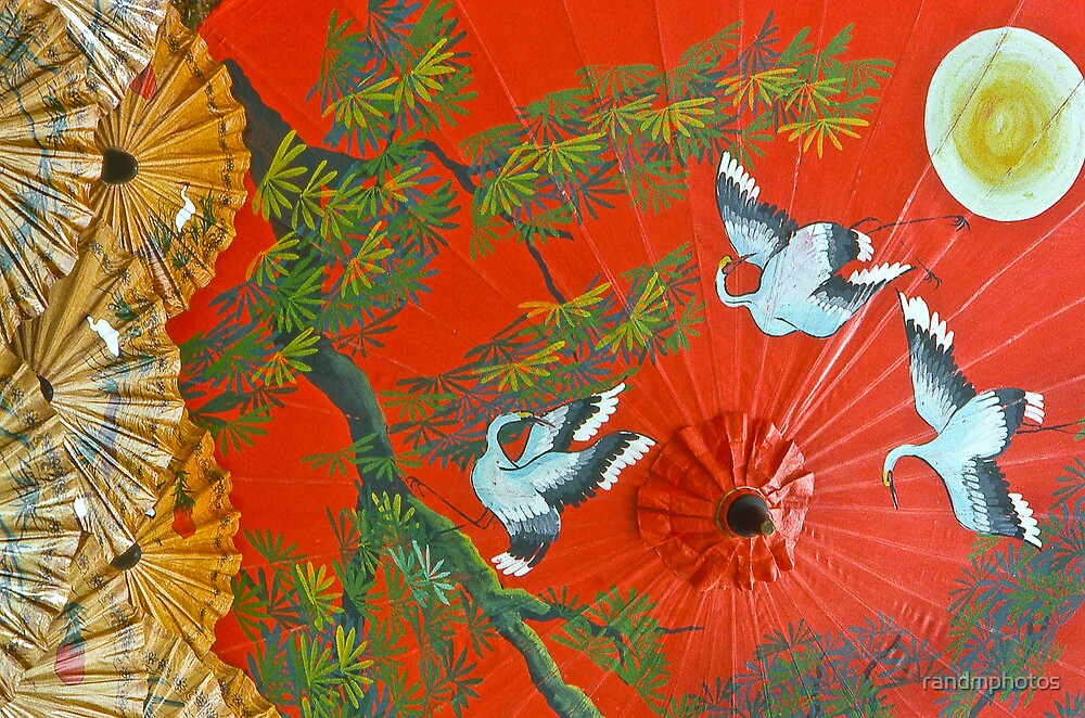 Thai Umbrella, Chiang Mai by randmphotos