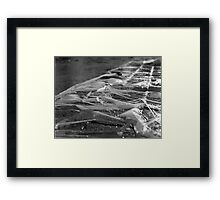 Ice Ice Baby Framed Print
