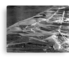 Ice Ice Baby Canvas Print