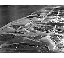 Ice Ice Baby Photographic Print