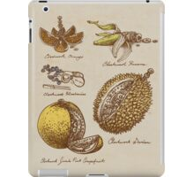 Steampunk  Fruit iPad Case/Skin