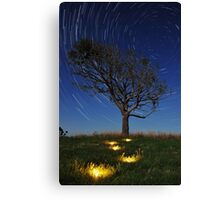 Stepping Stones to the Stars Canvas Print