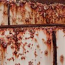 Rust by Lesley Williamson