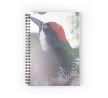 Wide Eye Woodpecker Spiral Notebook