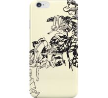 The Zankiwank & the Bletherwitch by Shafto Justin Adair Fitz Gerald art Arthur Rackham 1896 0063 Wee Fey iPhone Case/Skin