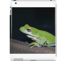 Night Time Visitor iPad Case/Skin