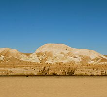 Yellow Desert by BradenSarai