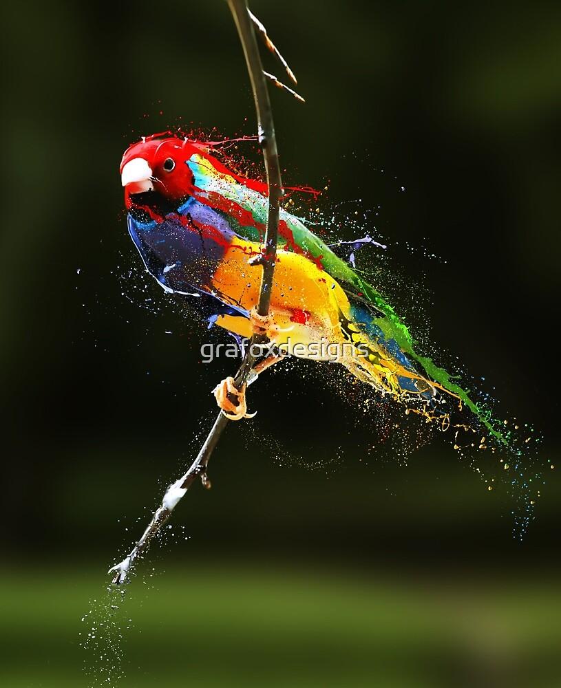 Splattered Bird by grafoxdesigns