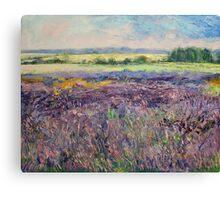 Provence Lavender Canvas Print