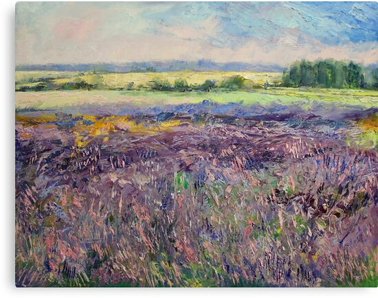 Provence Lavender by Michael Creese