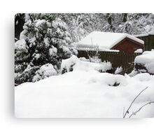 At least I'm not snowed in... Canvas Print