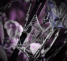 Dark Web by mark4321