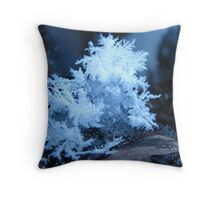 TIny Ice Crystals in the Shade Throw Pillow