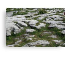 Ireland: Stony Grey Soil Canvas Print