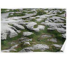 Ireland: Stony Grey Soil Poster