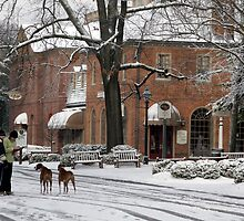 Williamsburg Dogs on Snowy DOG Street by Thomas Toohey Brown