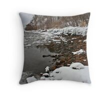 Ontario winter 5 Throw Pillow