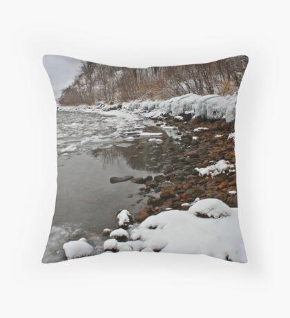 Ontario winter 5 Throw Pillow
